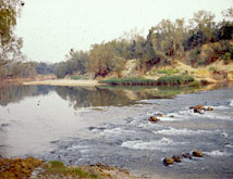 The Daly River